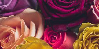 משלוחי פרחים להולדת ילד חדש